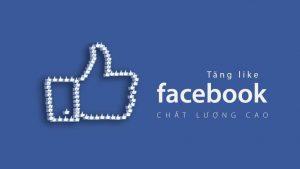 dịch vụ tăng like facebook uy tín