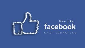 hướng dẫn tăng like facebook